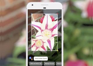 Google Lens: Te Dira Lo Que Estas Viendo