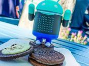 Android ¿Qué Project Treble? (¡adiós fragmentación!)