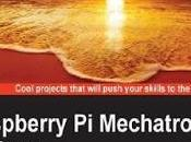 Raspberry Mechatronics Projects