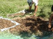 Producción Áreas Protegidas Bolivia