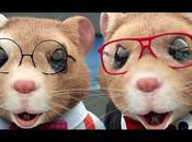 Hamsters pantalla nuevo.