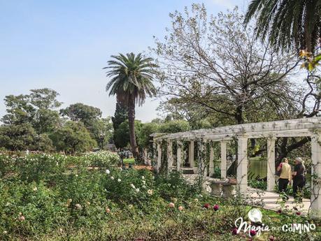 El Rosedal en los Bosques de Palermo, un oasis en la ciudad