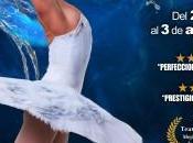 Ballet petersburgo. lago cisnes'.