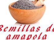 Cómo recolectar obtener semillas amapola