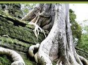 abismo verde manuel moyano