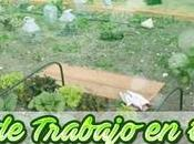 Jornadas trabajo EcoHuerto Abril Mayo