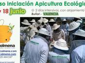 Curso Iniciación Apicultura Ecológica entre junio Buñol, Valencia, España