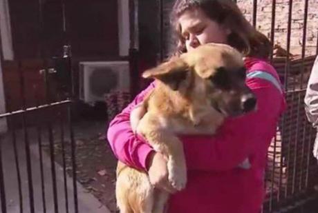 Perro rescata a bebé que fue tirado en la basura