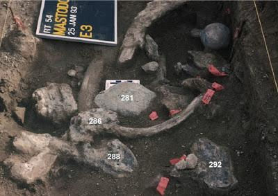 ¿¡Americanos hace 130,000 años!?