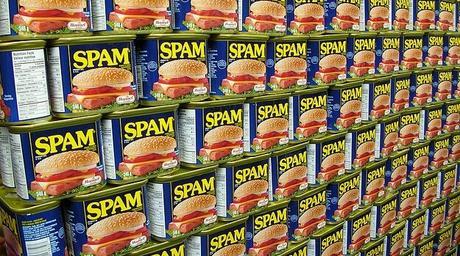 Qué es el SPAM y porqué es perjudicial para tu blog