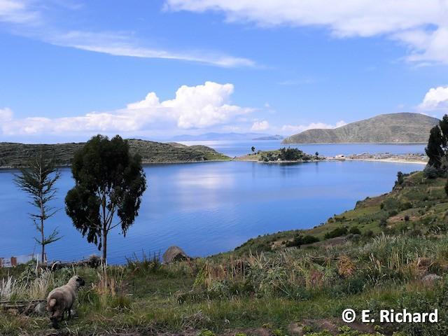 PORTFOLIO: Lago Titikaka...