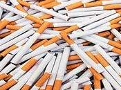 "España, ""campo pruebas"" tabaqueras parte)."