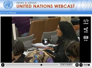 CHILEFREAK: Pastel Provida Profundo Prosernam en la ONU El 1 de Marzo de 2011
