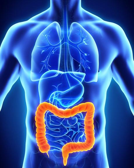 Dieta después de la cirugía de colon