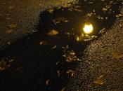 Iluminación, poema Master Dogen