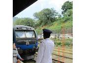 Travesía tren ceilandés entre Nanu Ella