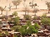 Mundial Lucha contra Desertificación Sequía, junio