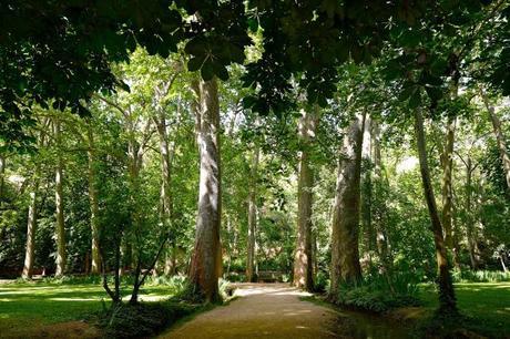 4 rutas naturales para disfrutar de Aragón en familia