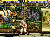 Fatal Fury Fighting ración lucha semanal NeoGeo semana