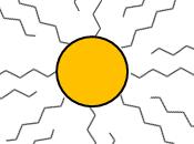 Nanopartículas ciencia equipo: trabajo multidisciplinar