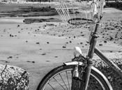 Cádiz. fotografías blanco/negro