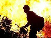 Propagación fuego. Modelos tipos fuego