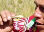 VIDEO (5:17): SIEMBRA COSECHA AGUA Ciclo agua cuenca