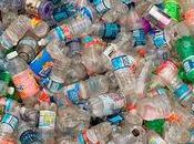 Conoce peligros plástico para nuestra salud