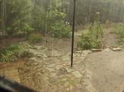 Viernes, llovía mares!! (Daños jardín)