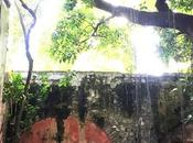 Hacienda Chiconcuac, Parte