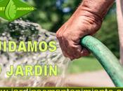 Consejos para cuidado jardín verano