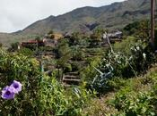 Norte Tenerife: cara salvaje isla