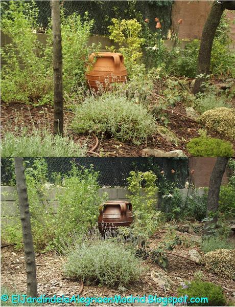 C mo envejecer una tinaja de barro para el jard n for Tinajas de barro para jardin