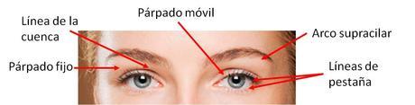 En busca del contorno de ojos ideal