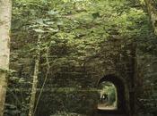 Imprescindibles visita Escocia (11). Hermitage bosque hadas gnomos