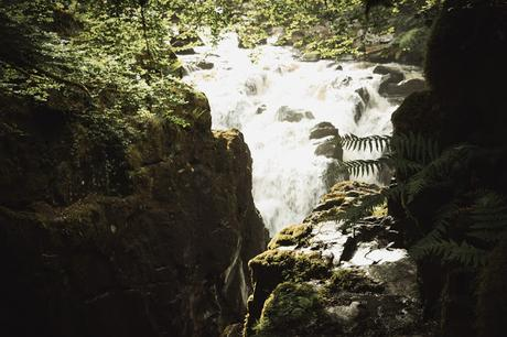 Imprescindibles en tu visita a Escocia (11). The Hermitage un bosque de hadas y gnomos