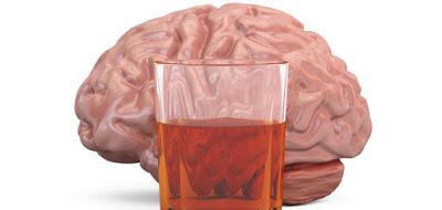 ¿BEBEDORES MODERADOS? El cerebro no es de la misma opinión