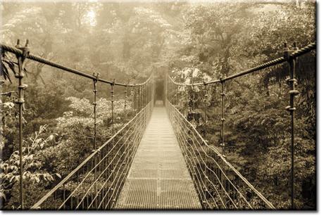 Los puentes caídos