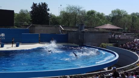 Un día en el zoo, plan perfecto para que los fines de semana se hagan menos aburridos