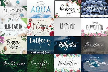 Fitness And Chicness-The Hungry JPEG-Free Font Bundle