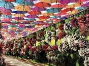 Wedding Inspiration: paraguas también para