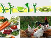 alimentos indispensables dieta para gozar buena salud