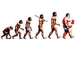 alimentos dieta paleolitica