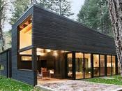 Vivienda Minimalista medio Bosque Washington