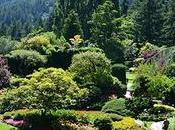 Butchart Gardens, colorido regalo vista