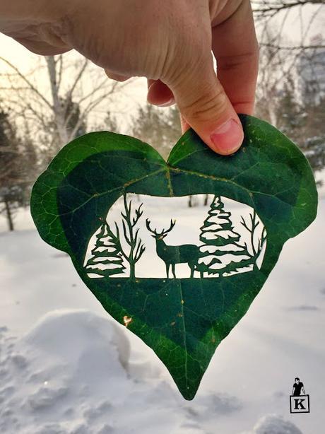Una nueva forma de hacer un dibujos con hojas de arboles ¡te sorprenderás!