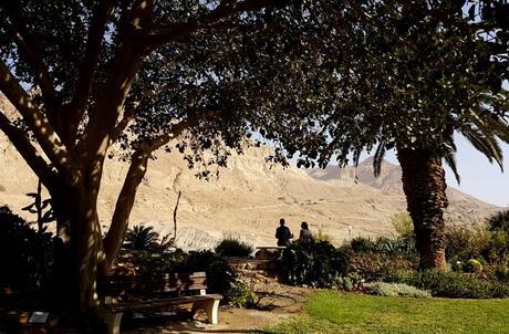 Mirador del jardín botánico de Ein Gedi al desierto mar Muerto en Israel