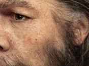 ¿Porqué extinguieron neandertales?