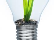 ¿Cómo promocionar negocio sostenible?