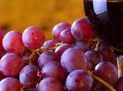 Beneficios para Salud: Resveratrol